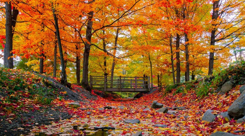 Bridge over a creek in Ashby Massachusetts