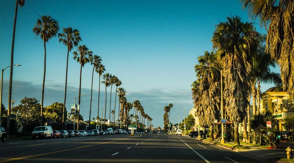 beaches, palm trees and sunshine in California