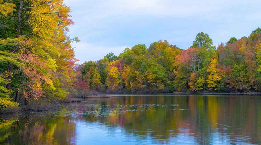 river in Irvington, New Jersey during Autumn