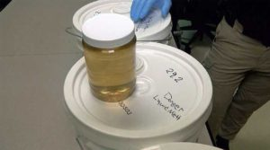 liquid meth confiscated by U.S. customs