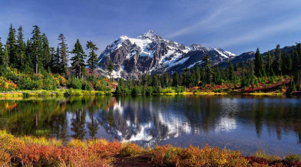 mountains and forest in Washington State USA