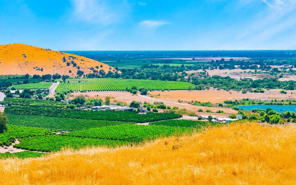 Top-Rated Rehab Centers in Clovis, CA