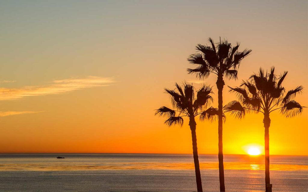 Top-Rated Rehab Centers in Carlsbad, CA